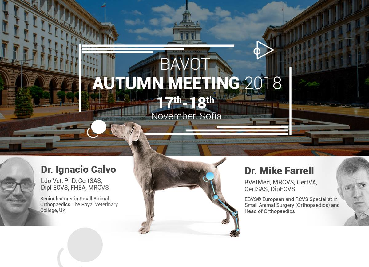 Autumn BAVOT meeting 2018